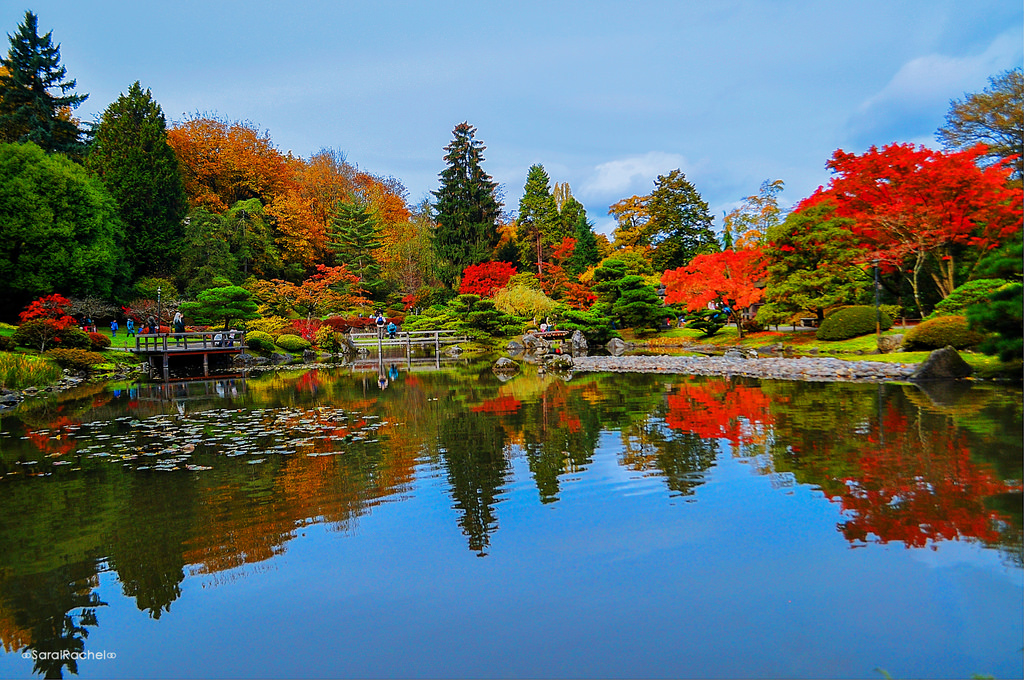 Reflections on The Japanese Garden by Jitabebe, on Flickr