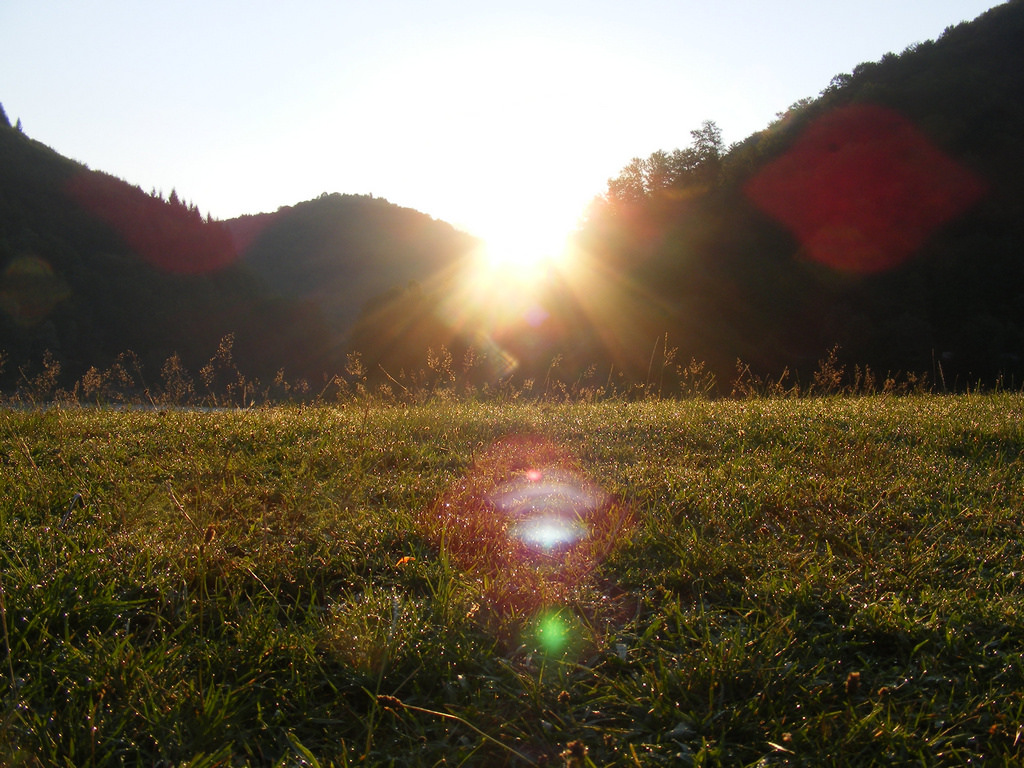 Dew-Drops-on-the-Grass_Morning-Sunrise-R by Public Domain Photos, on Flickr