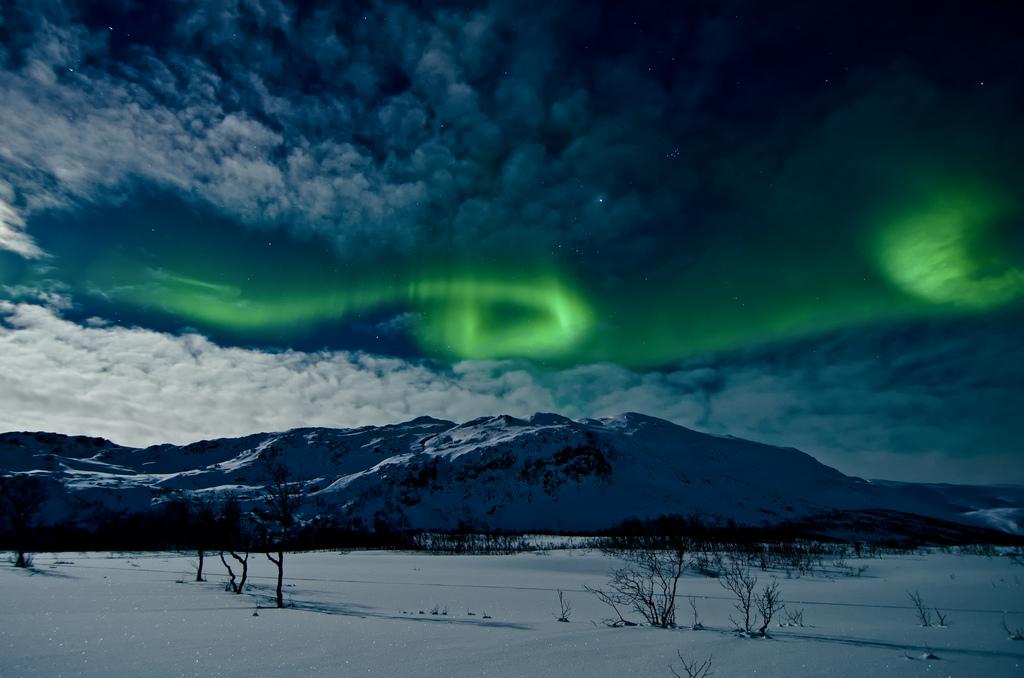 Aurora Borealis by Andi Gentsch, on Flickr