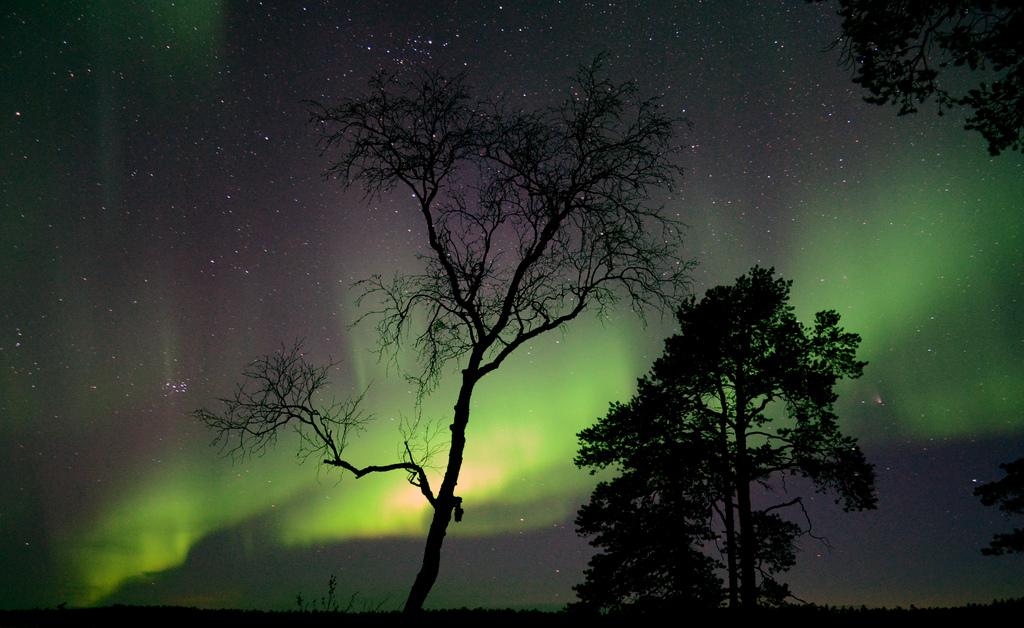 Aurora Borealis by StevoKebabo, on Flickr