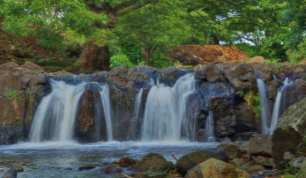 Nuuanu Stream At Liliuokalani Park 2 by Eric Tessmer, Honolulu Hawaii, on Flickr