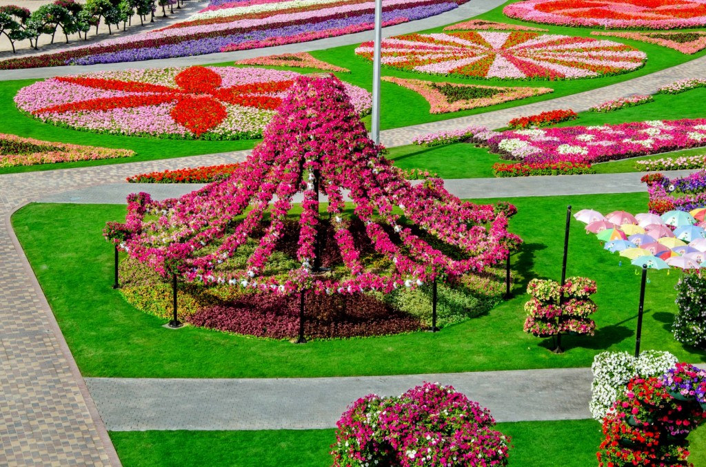 Dubai Miracle Garden by Srilathablog, on Flickr