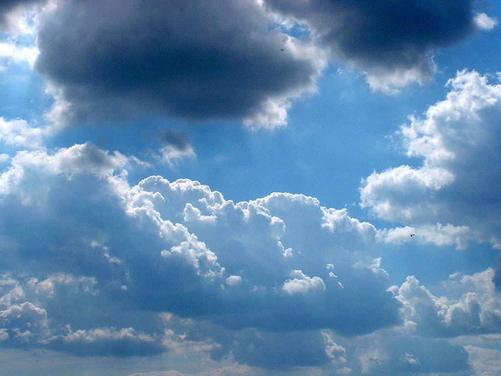 Blue sky with white fluffy clouds by Dominic
