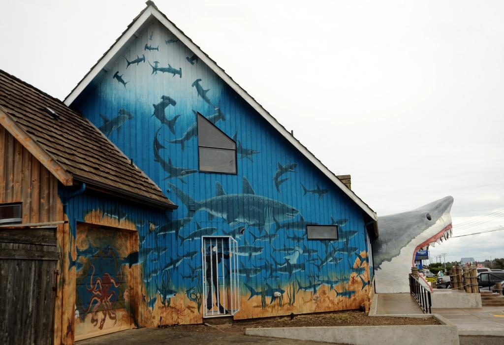 Shark bite, front door, mural of sharks, by Wonderlane, on Flickr