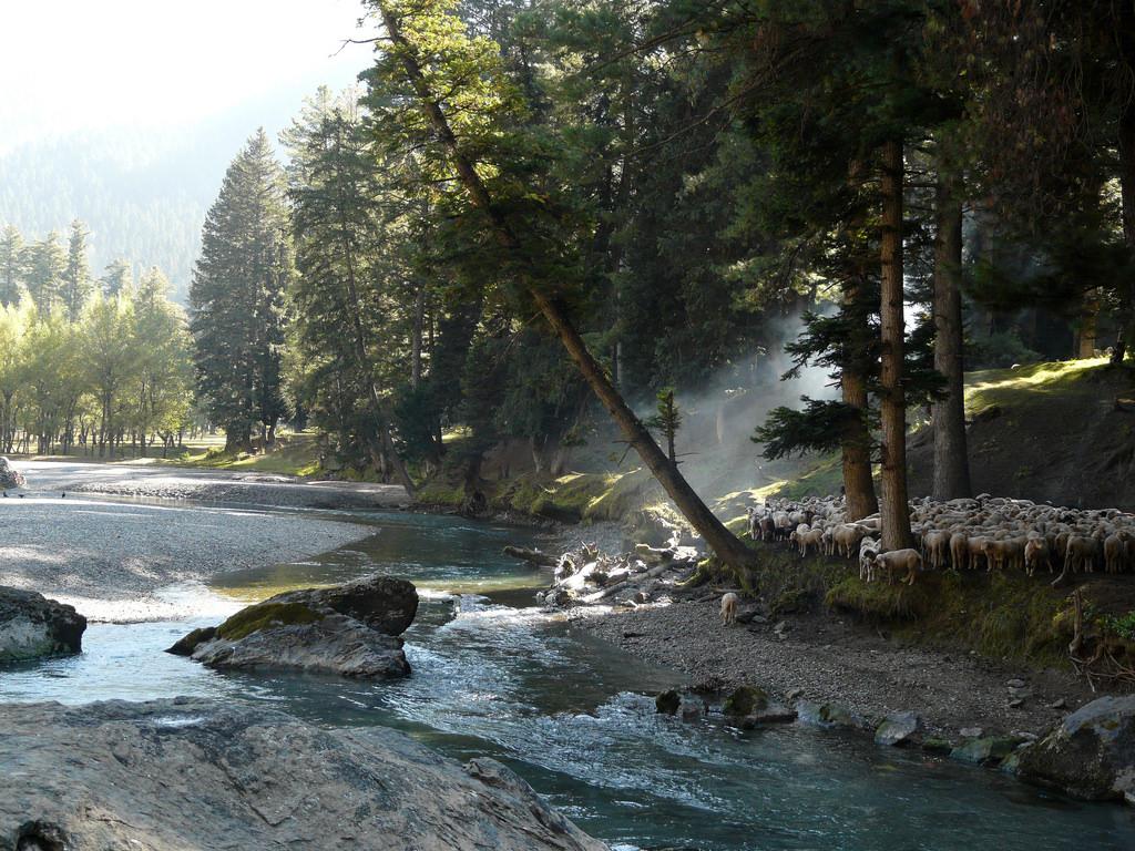 Betab Valley,  Pahalgam,  Kashmir by Dr PS Sahana * Kadamtala Howrah, on Flickr