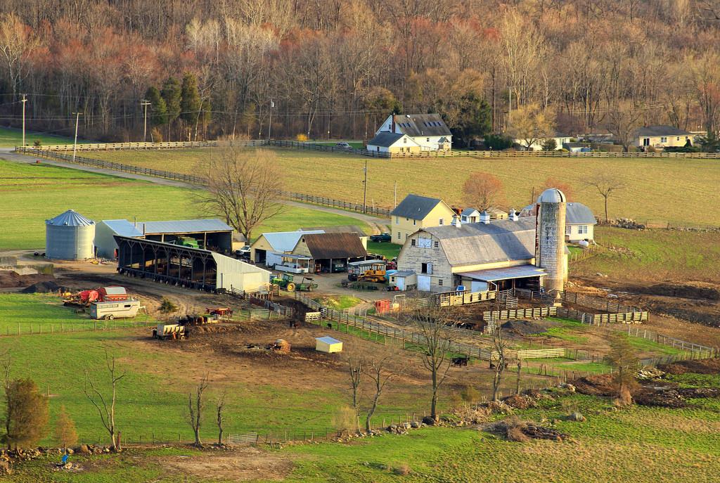 Old Farm Sanctuary (5) by Nicholas_T, on Flickr