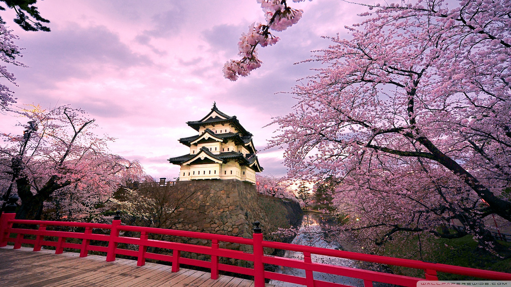 cherry_blossoms_japan_2-wallpaper-1920x1 by mehmetcanli00, on Flickr