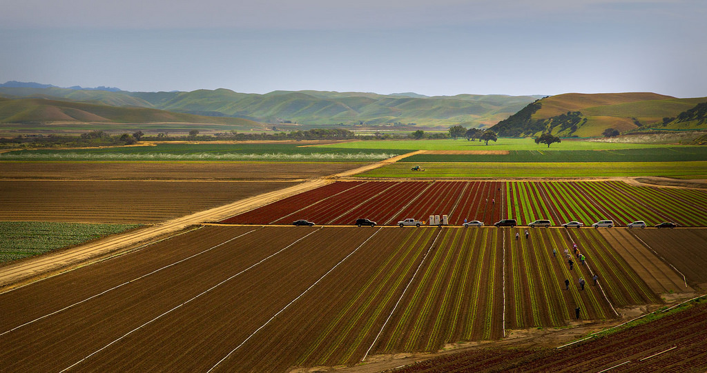 The Nation's Salad Bowl by Malcolm Carlaw, on Flickr
