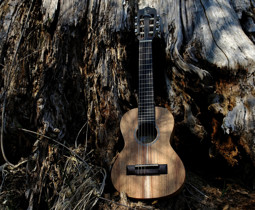 """Guitalele (Model """"GS"""" by APC Instruments by FHgitarre, on Flickr"""