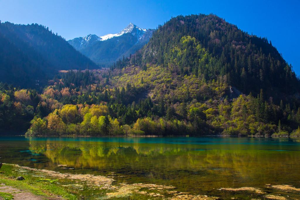 Five Flower Lake, Jiuzhaigou Valley by jmhullot, on Flickr