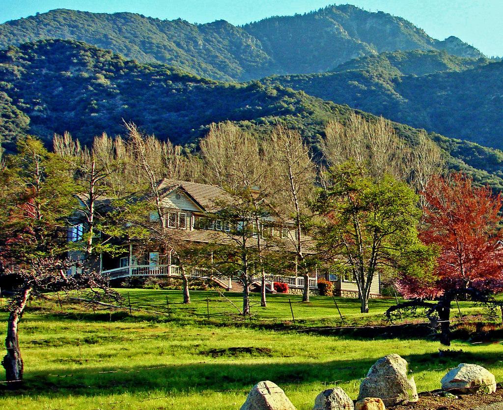 Good Morning Sunshine, Oak Glen, CA 3-13 by inkknife_2000 (8 million views +), on Flickr