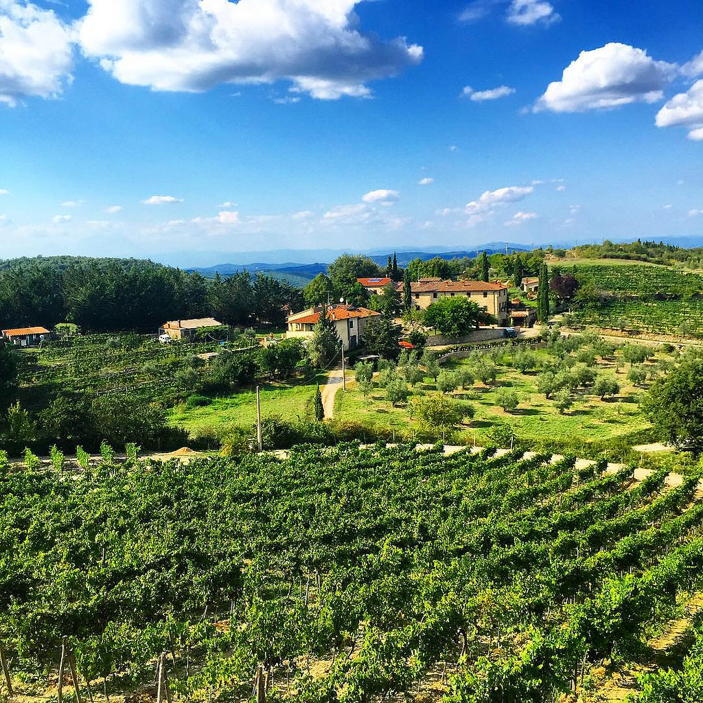 #italy #italia #tuscan #toscana #winery by .v1ctor Casale., on Flickr