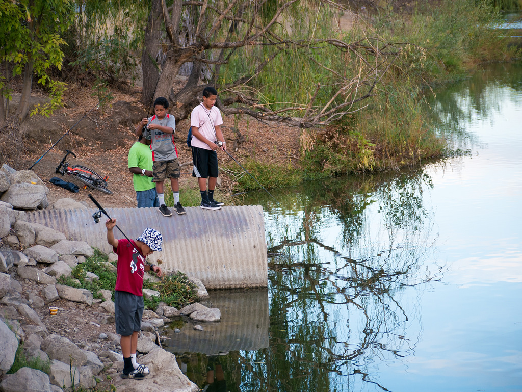 Kids Fishing at Almaden Lake by donjd2, on Flickr