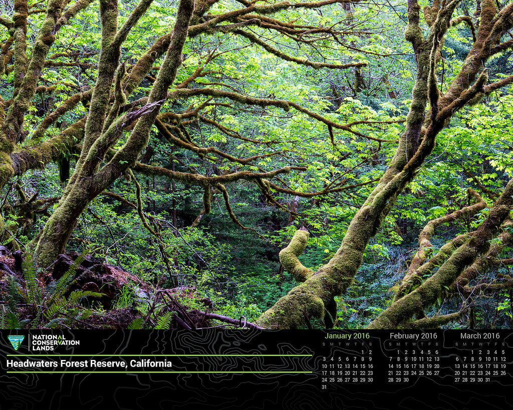 January 2016 Calendar in Honor of #conse by mypubliclands, on Flickr
