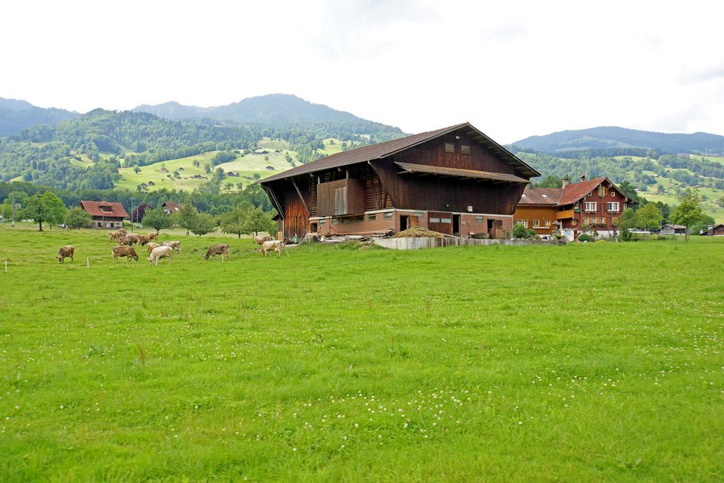 Switzerland-03679 - Local Farm by archer10 (Dennis) 98M Views, on Flickr