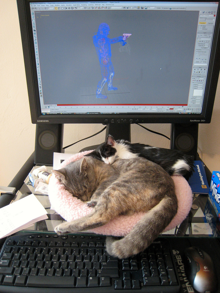 sleeping computer cats by i eated a cookie, on Flickr