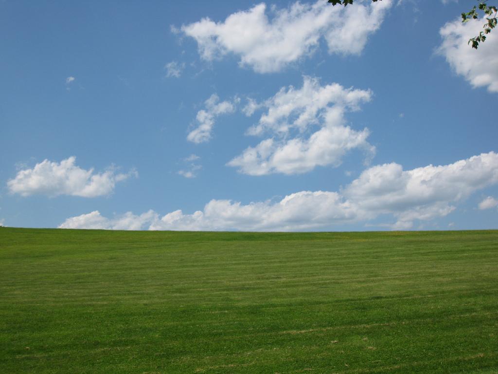 White Oak Park by daveynin, on Flickr