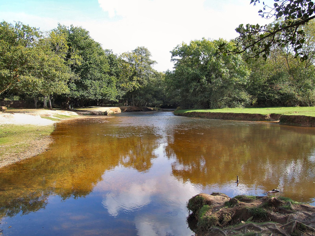New Forest - Balmer Lawn by Chalkie_CC, on Flickr