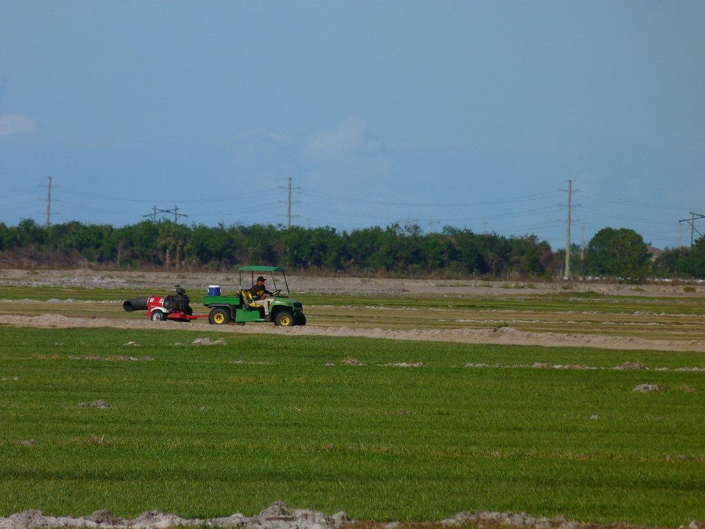 Duda Sod Farm, Viera FL by Rusty Clark ~ 100K Photos, on Flickr