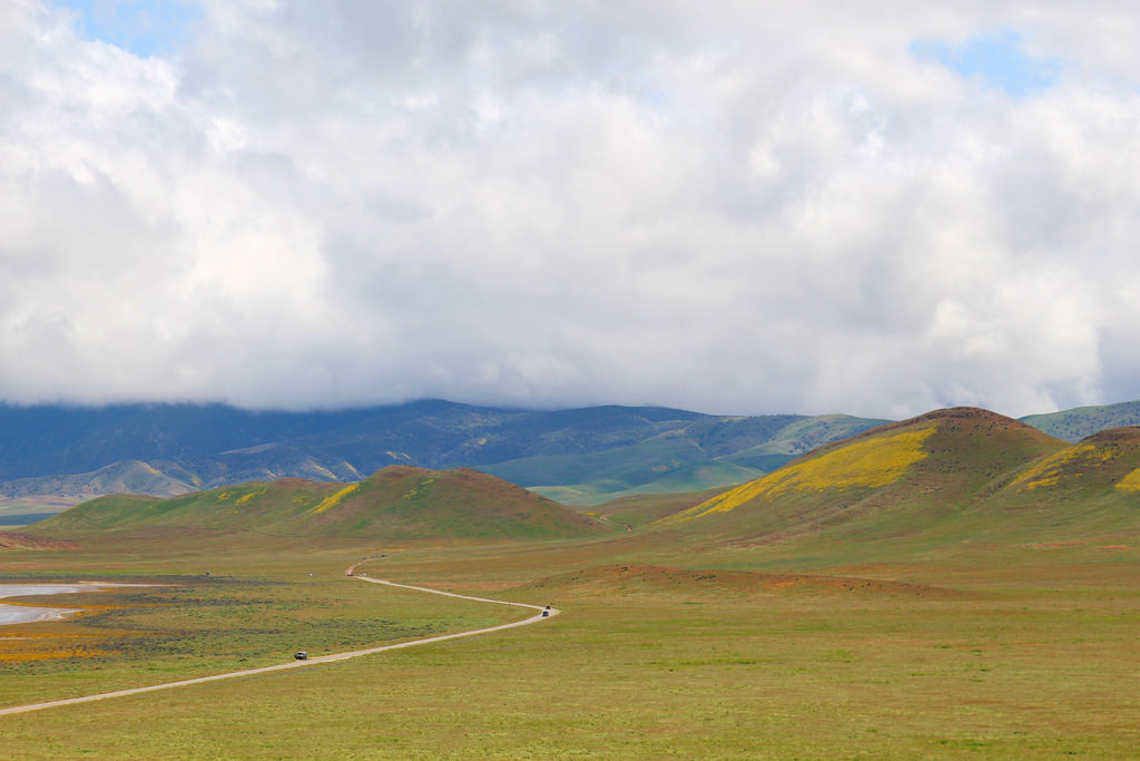 Soda Lake Road through Carrizo Plains by daveynin, on Flickr