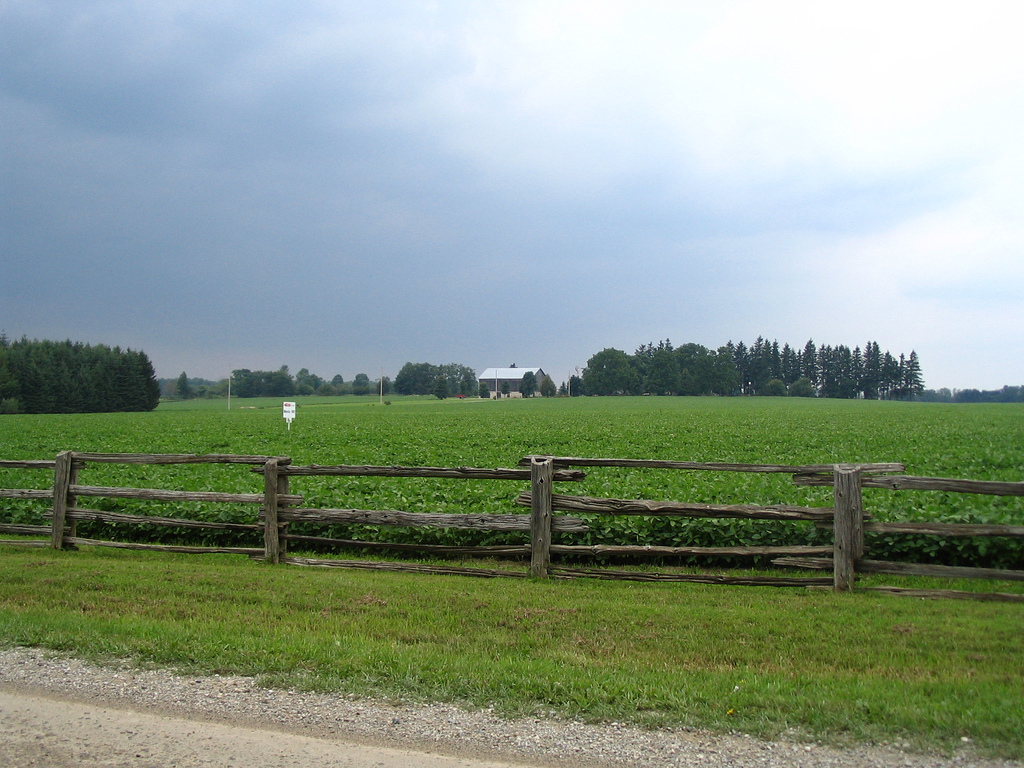 Old wood fence, farm, and field outside by D Coetzee, on Flickr