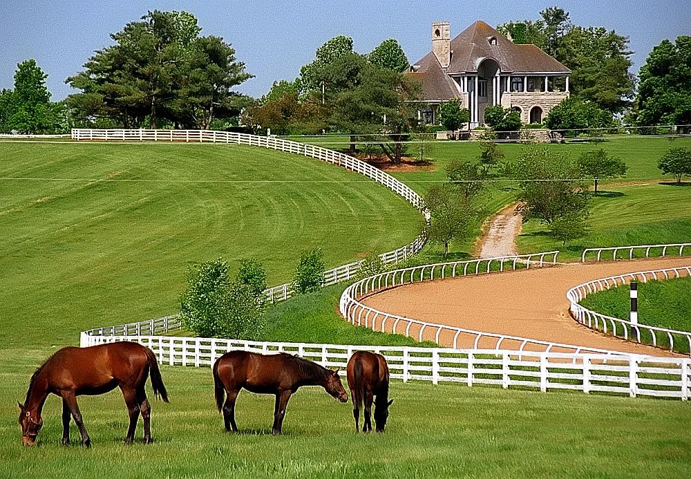 Lexington Kentucky - Donamire Farm by David Paul Ohmer, on Flickr