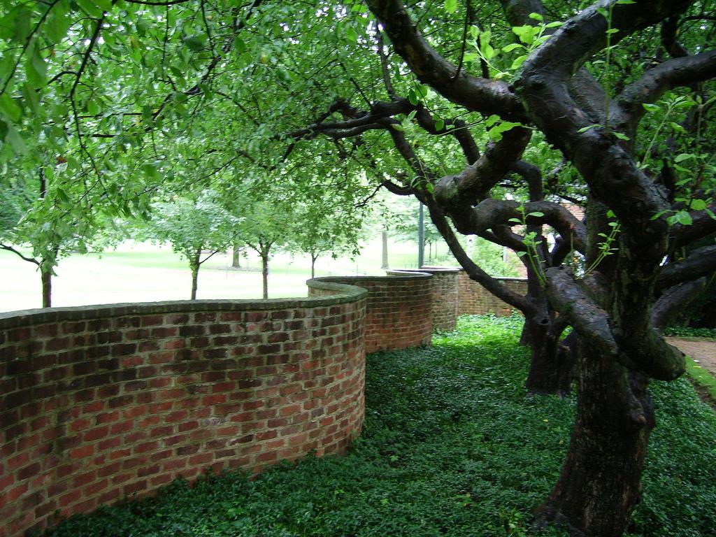 University of Virginia Serpentine Brick by TC Cool, on Flickr