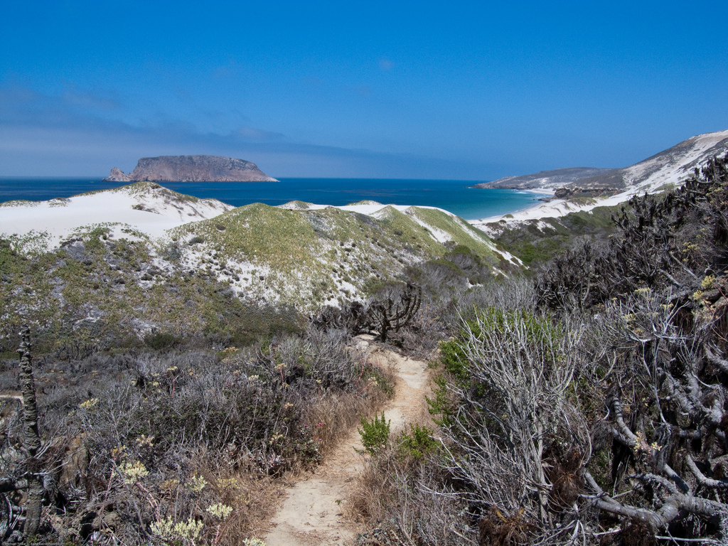 View from San Miguel Island hike. Three- by mikebaird, on Flickr