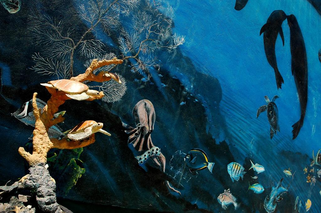trompe l'œil detail, Blue Ocean Mural, by Wonderlane, on Flickr