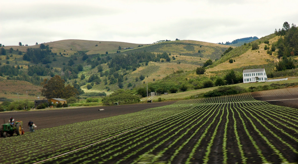 Working the long fields near the white h by Wonderlane, on Flickr