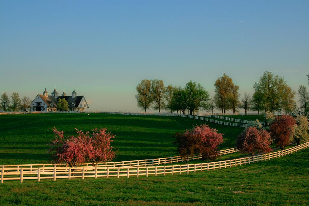 Manchester Farm, Lexington KY by Navin75, on Flickr
