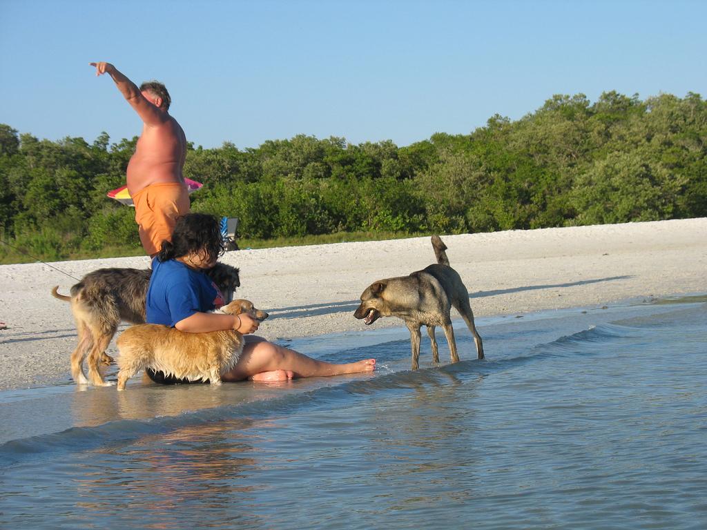 Rusty makin' friends at Dog Beach, Bonit by nikoretro, on Flickr