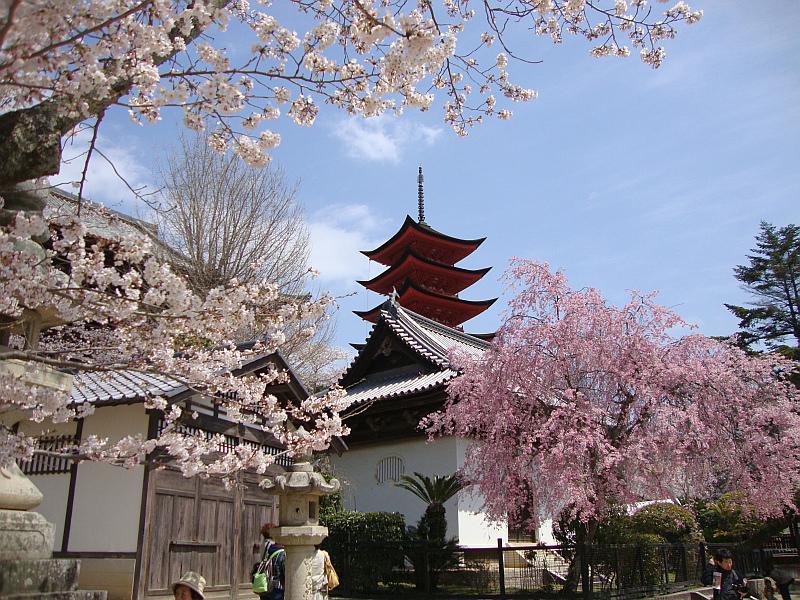 Pagoda On Miyajima Island Japan by Jordan Emery, on Flickr