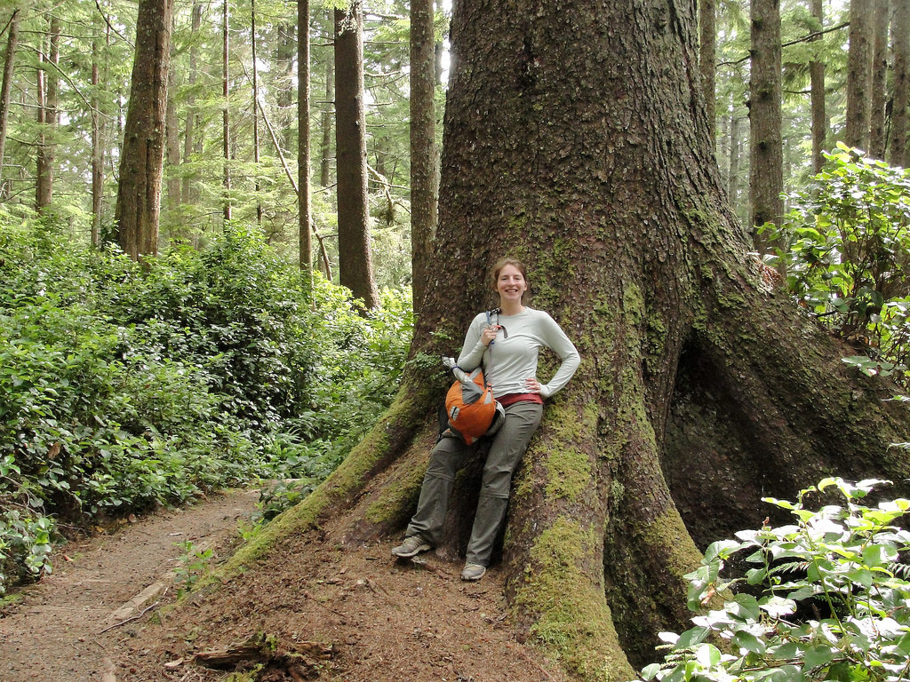Hiker and big Sitka spruce (Picea sitche by MiguelVieira, on Flickr