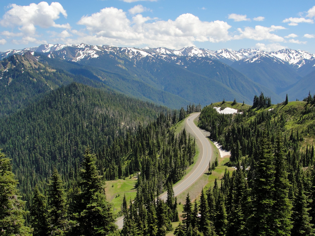 Hurricane Ridge Road from Olympic Nation by MiguelVieira, on Flickr