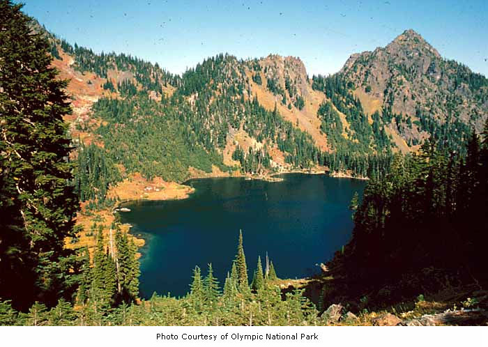 Lena Lake, Olympic National Park, date u by IMLS DCC, on Flickr