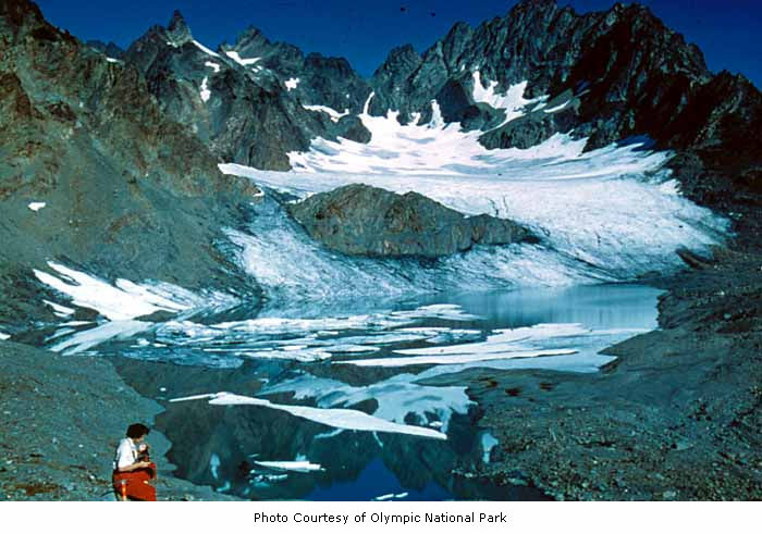 Anderson Glacier, Mount Anderson, Olympi by IMLS DCC, on Flickr