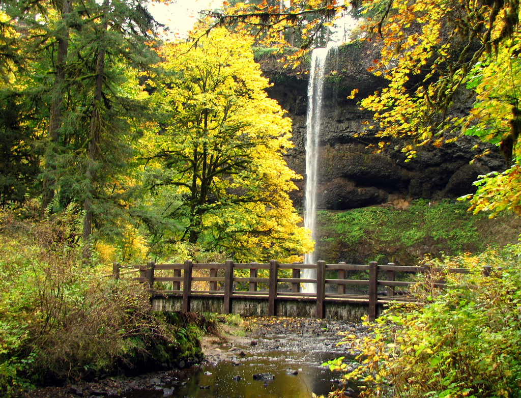 South Falls, Silver Falls State Park, Or by DBerry2006, on Flickr