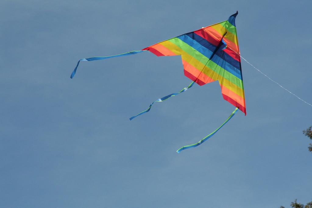 Aaron's Kite by poissantfamily, on Flickr
