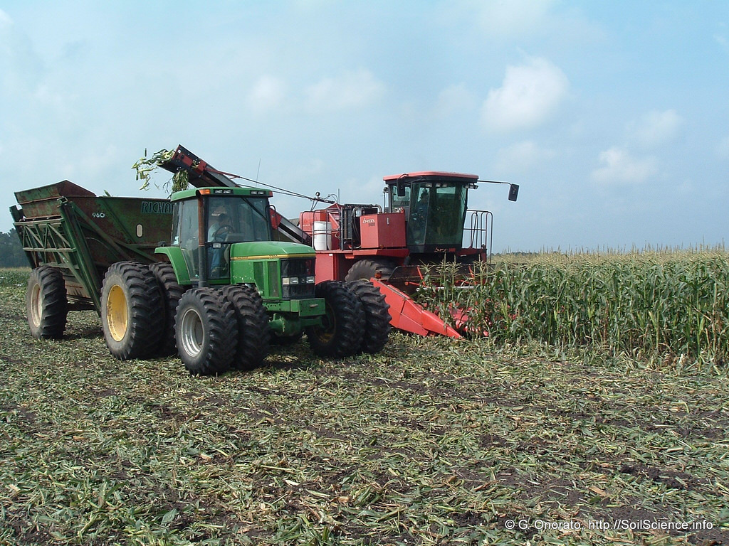 Sweet corn production at Open Grounds Fa by SoilScience.info, on Flickr