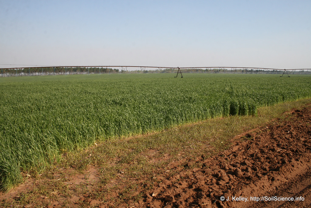 An agricultural landscape typical of the by SoilScience.info, on Flickr