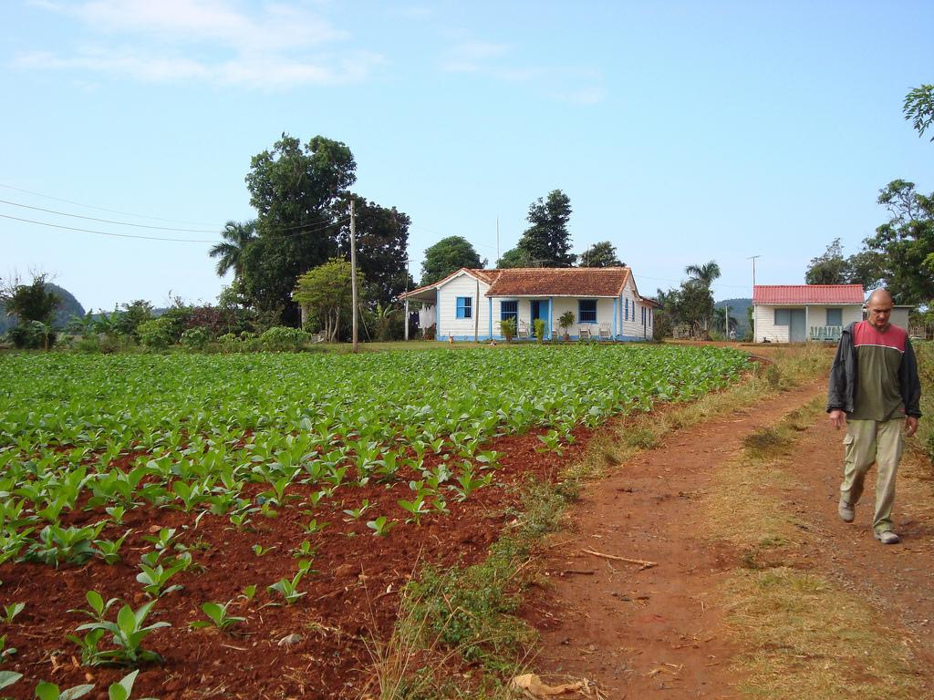 Tobacco Farm - Viñales - Cuba by Adam Jones, Ph.D. - Global Photo Archive, on Flickr