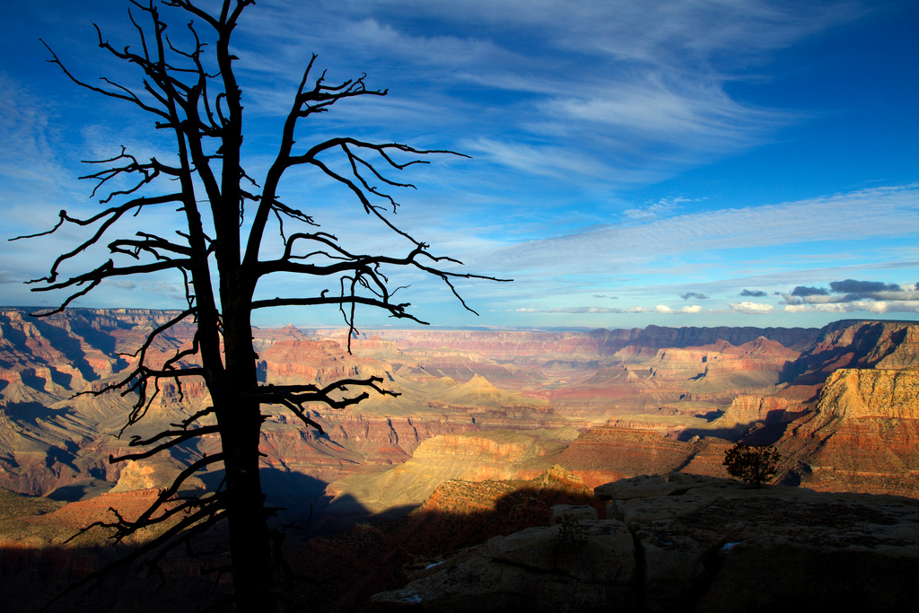 Grand Canyon National Park by StuSeeger, on Flickr