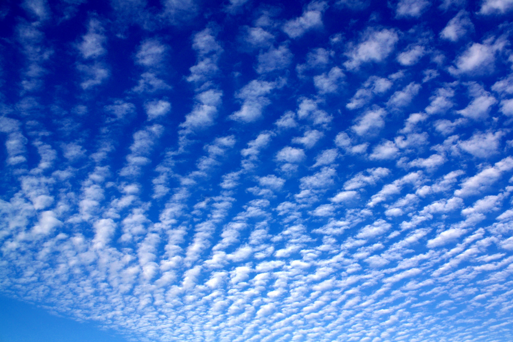 sheep clouds by followtheseinstructions, on Flickr