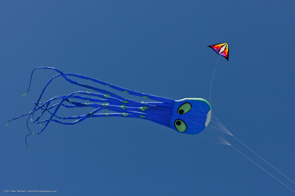 Octopus Kite Flying at Morro Bay CA Kite by mikebaird, on Flickr