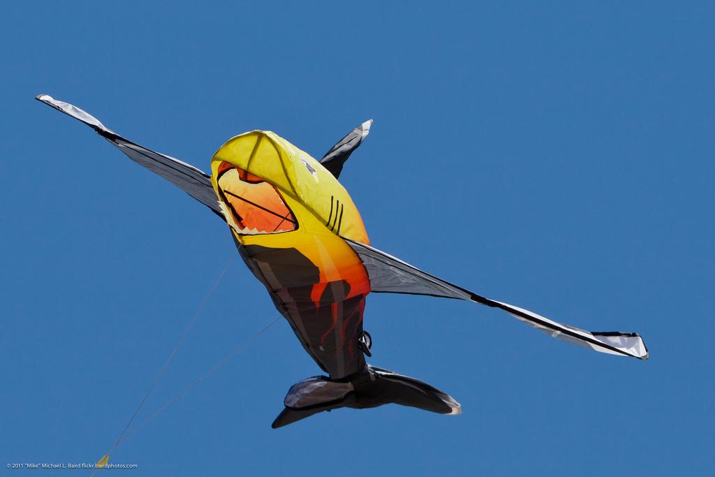 Shark Kite Flying at Morro Bay CA Kite F by mikebaird, on Flickr