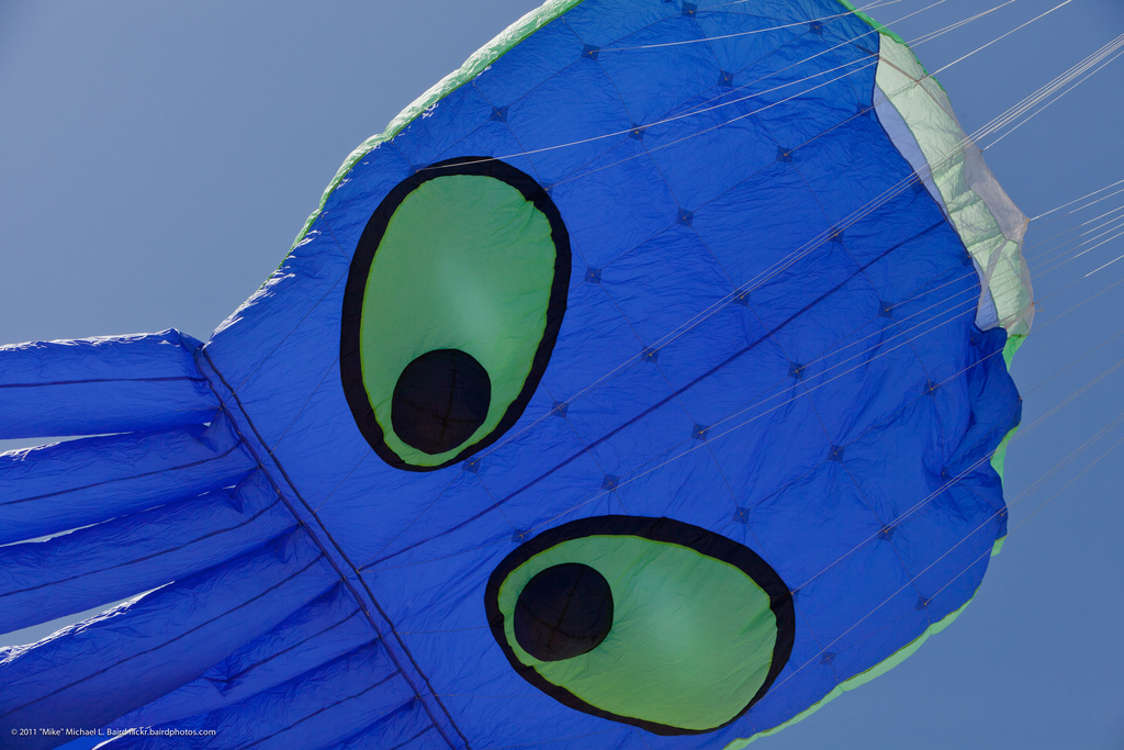 Close-up Octopus Kite Flying at Morro Ba by mikebaird, on Flickr