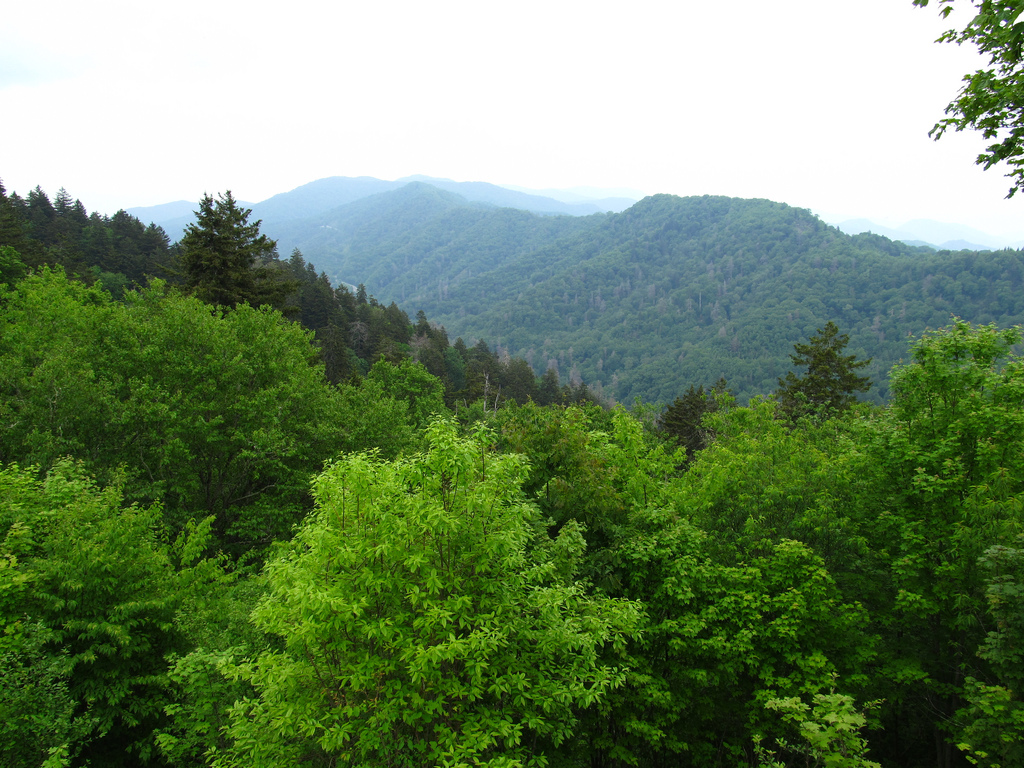 View of Great Smoky Mountains from Crest by Ken Lund, on Flickr