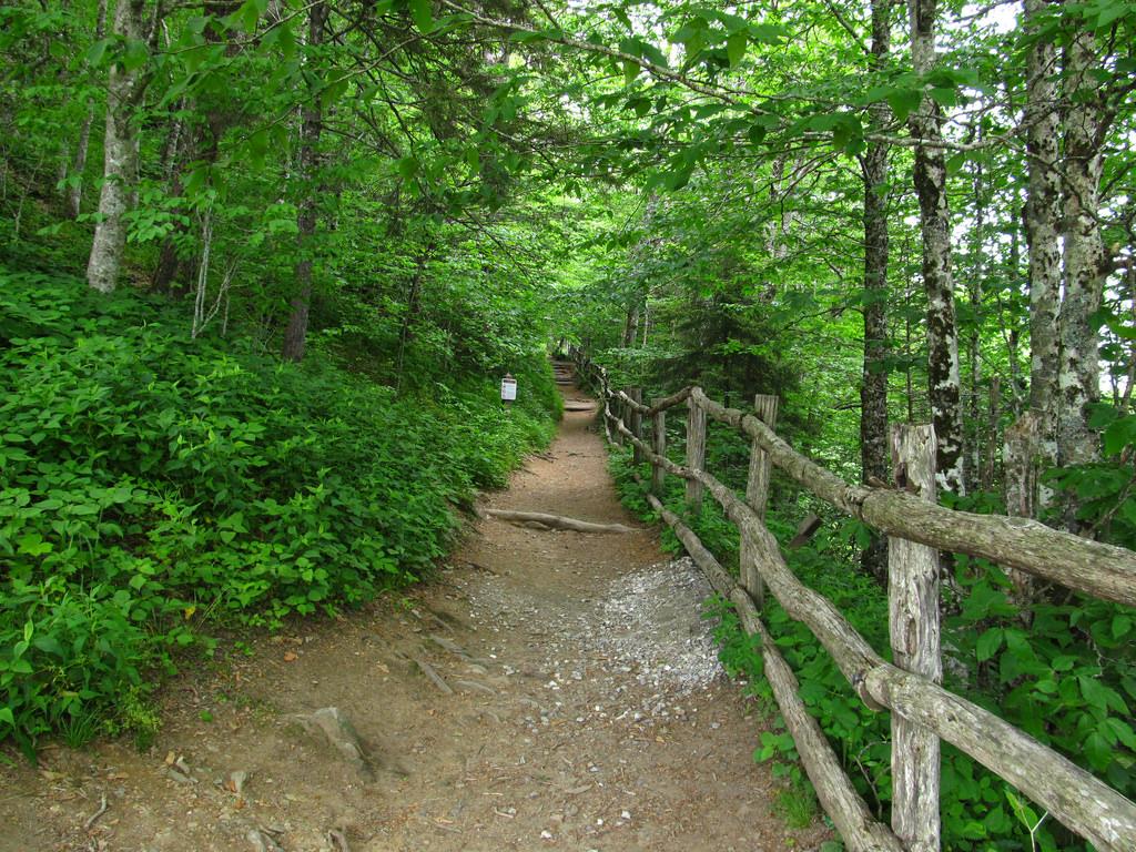 Appalachian Trail, Newfound Gap Road, Gr by Ken Lund, on Flickr
