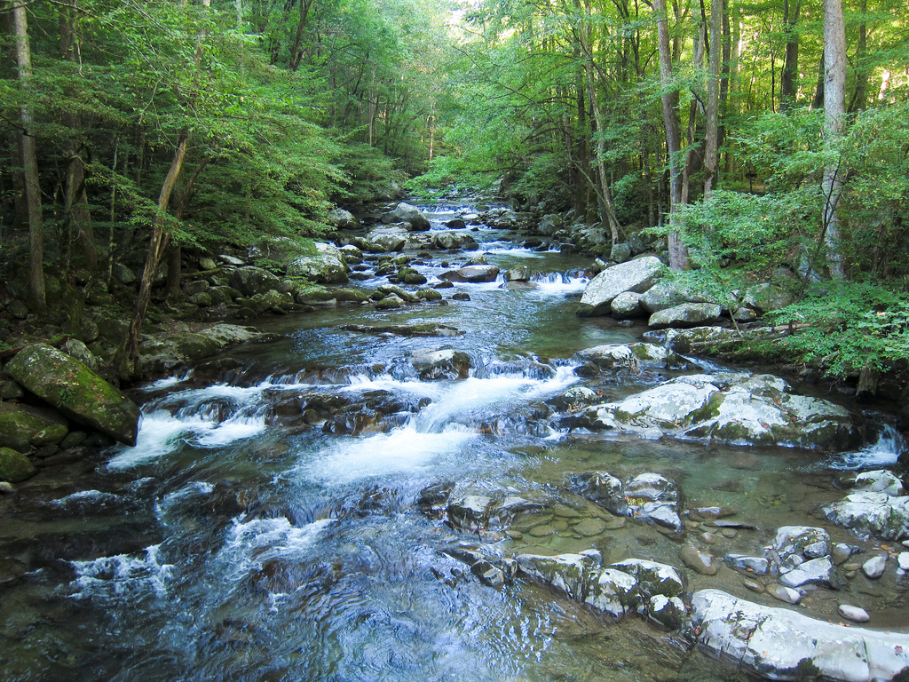 Big Creek in Great Smoky Mountains Natio by MiguelVieira, on Flickr